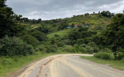 Driving tips for your South Africa road trip