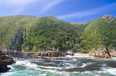 Discover Tsitsikamma on the Garden Route